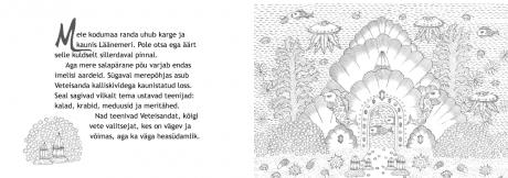 veealune-loss_sisu_lk-2_3
